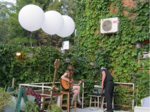 Venčanje u piceriji Dvorište na Senjaku, (septembar 2017)