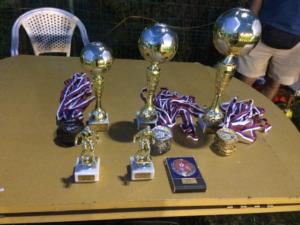 Turnir dečijeg fudbala Lavovi Cup Beograd u Kovilovu (septembar, 2018)